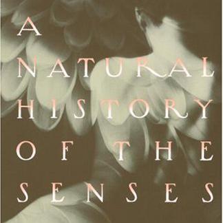 Natural History of the Senses (thumbnail)