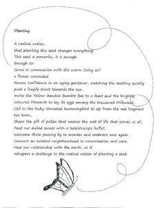FUTURES/forward: Wings & Tales, Naomi Tessler