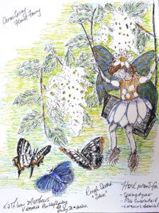 FUTURES/forward: Wings & Tales: Naomi Tessler